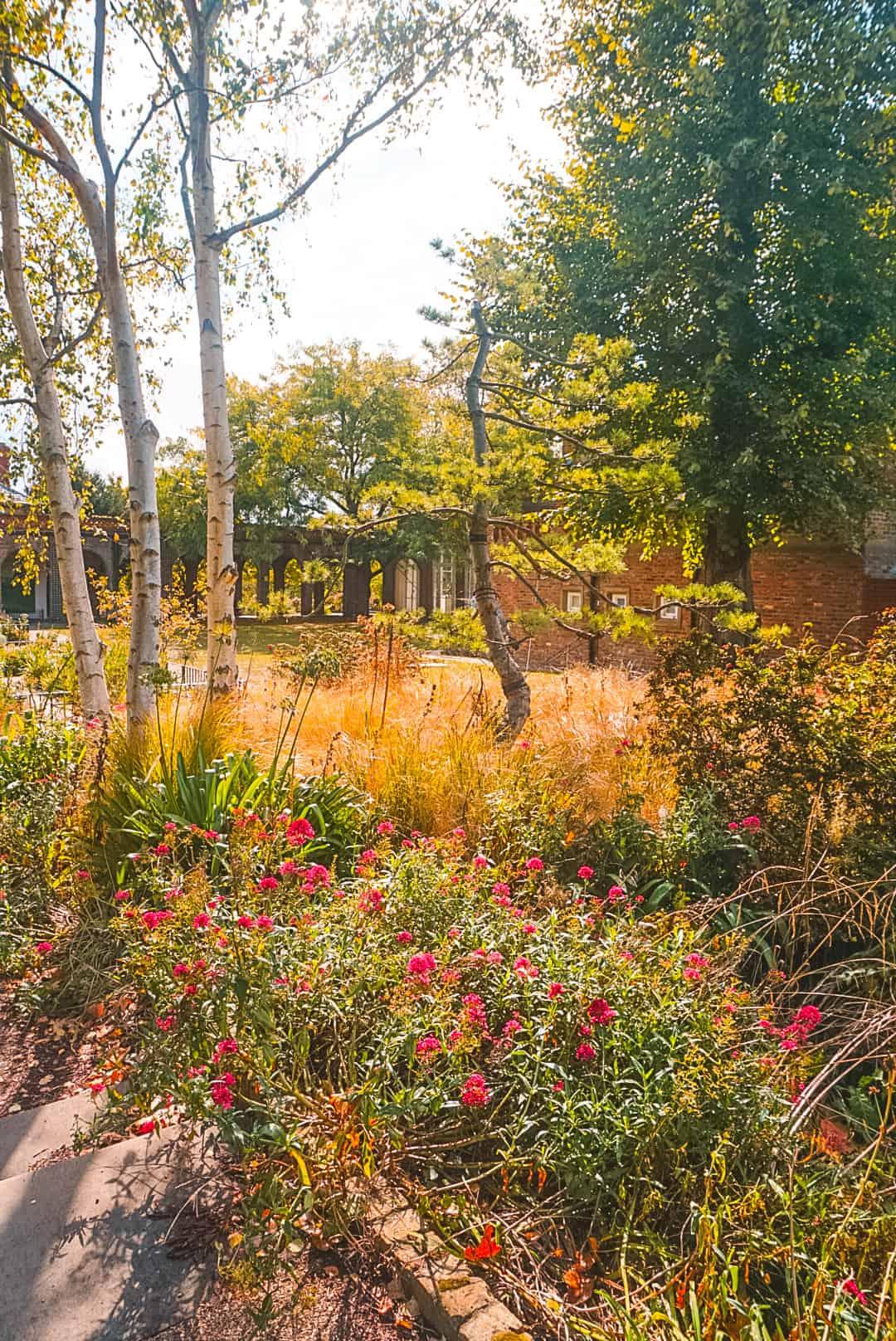 Flower-Grove-at-Holland-Park-.jpg
