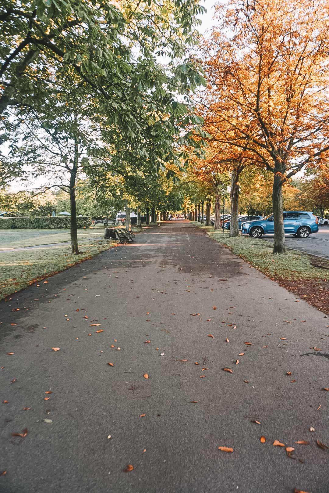 Walkway at Greenwich Park
