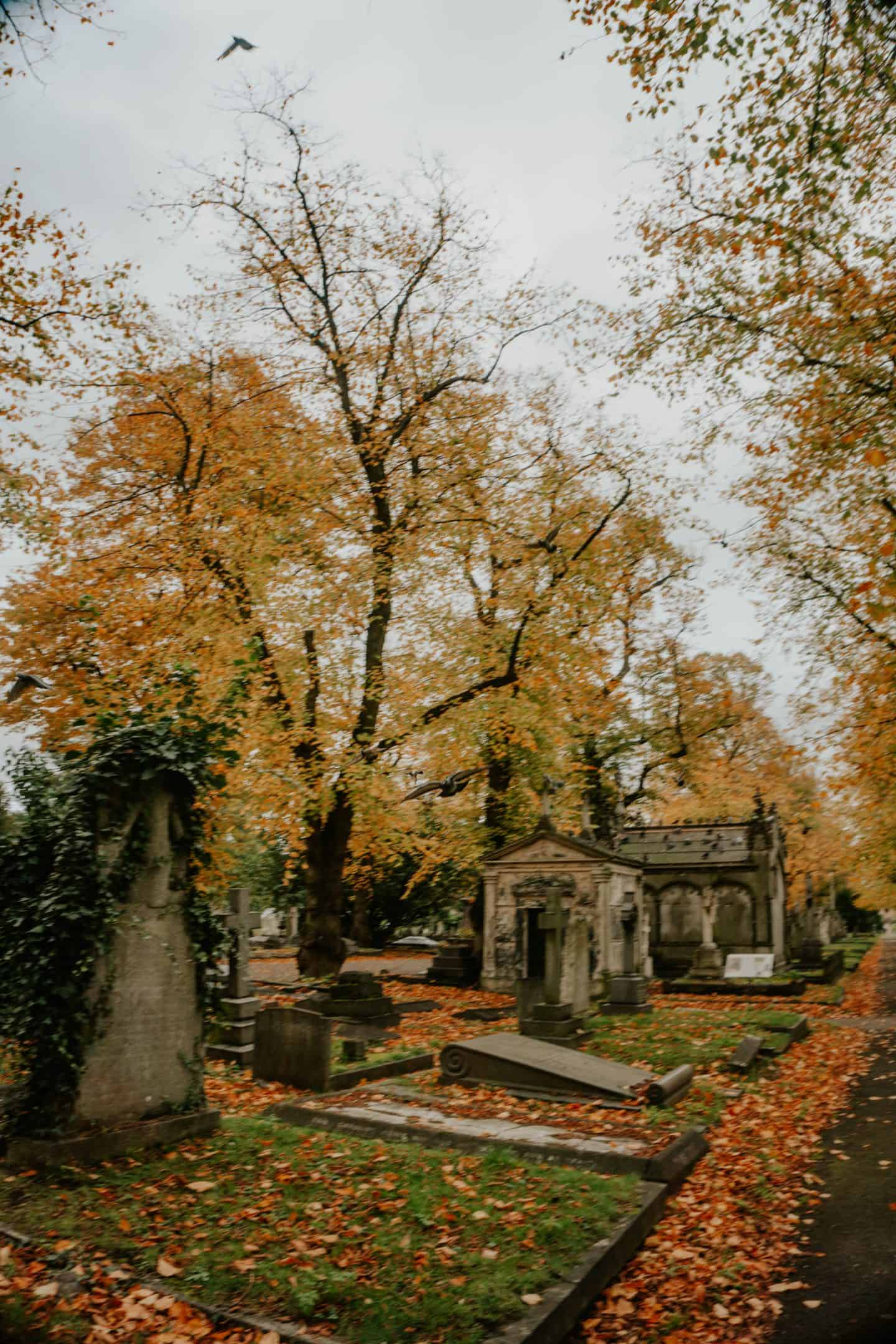 Graves at Brompton Cemetery London