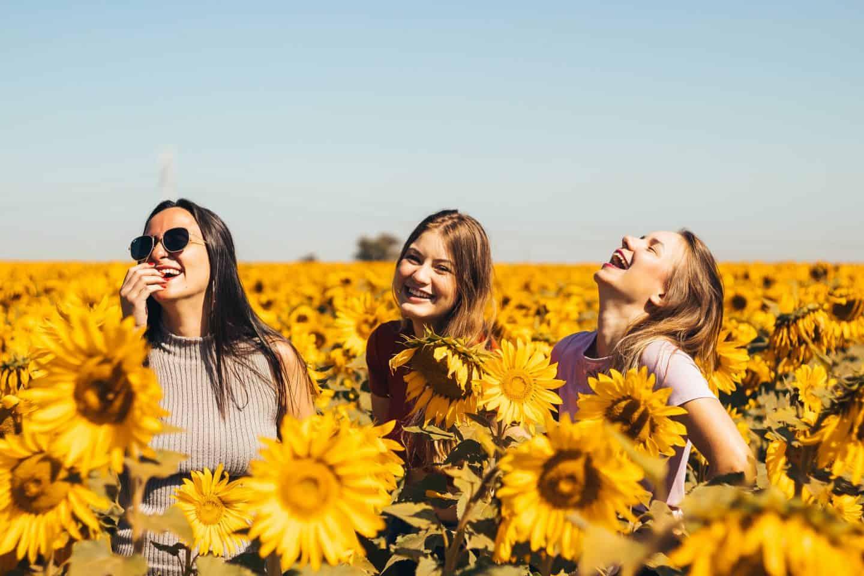 how-to-make-friends-in-london-sunflower-field